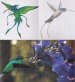 Ba'ku hummingbird concept