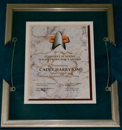 Flight proficiency award at auction
