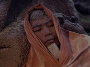 Sulu erfriert