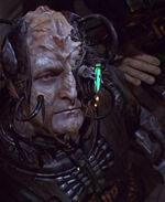 Borg klingon