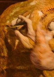 Crepusculan-anatomy-0004