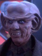 Quark 2365