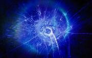 Mycelial network