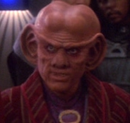 Quark hologram2374
