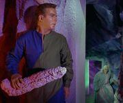 Kirk's stalactite