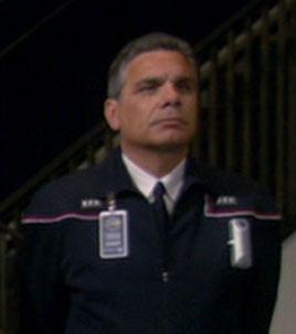 Steve D'Errico