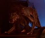 Monster dog full