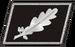 Nazi colonel