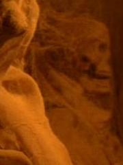Vulkanische Mumie 2154