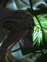 Mitglied von Spezies 8472 in Kes' Telepathie (2373)