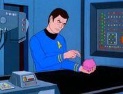 McCoy untersucht einen Tribble