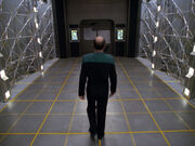 The Doctor leaves the holodeck, Nothing Human