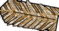 Mirror capt-vest