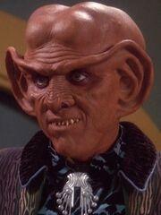 Quark 2373