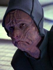 Bothaner auf der Voyager 2372