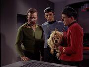 Scott meldet Kirk den defekt des Transporters