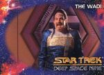 Star Trek Deep Space Nine - Season One Card083