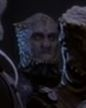Jem'Hadar Guard 2, To the Death