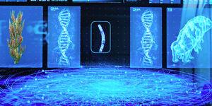 Tardigrado ADN Prototaxites stellaviatori transferencia genetica horizontal DIS Choose Your Pain