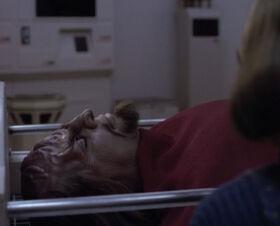 Worf's death