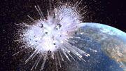 Xindi-Waffe Zerstörung