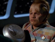 Neelix and his dented frying pan