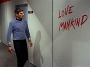Graffiti Love Mankind