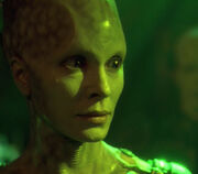 Borg Queen stares