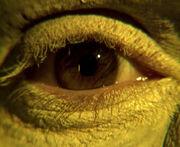 Borg eye