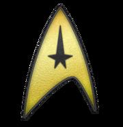 USS Enterprise (NCC-1701) assignment patch