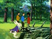 Kaninchen Wunderland 2269