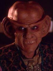 Quark 2372
