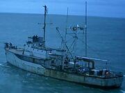 Walfänger 1986