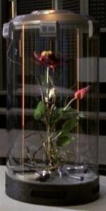 Symbiogenetic hybrid