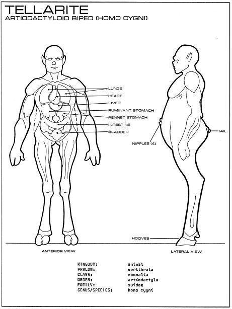 Image - Tellarite anatomy - Star Fleet Medical Reference Manual.jpg ...