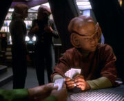 Nog and Jake playing cards