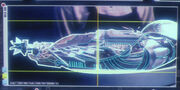 Borg arm scan