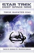 These Haunted Seas cover