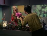 Sulu beruhigt Beauregard