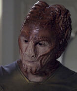Hirogen fighter