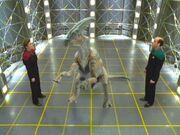 Janeway und der Doktor betrachten einen Dinosaurier