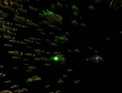 Zwerm Voyager