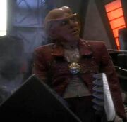 Quark is a daddy