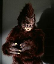 Anthropoid ape