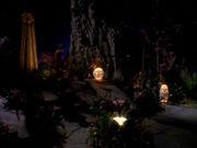 Odo und Kira im Arboretum