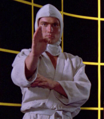 ...as holographic Aikido fighter