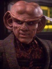 Quark 2371