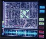Gosis' species city scan