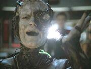 Seven of Nine von Borg getrennt