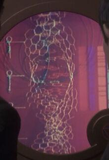Vulcan DNA schematic